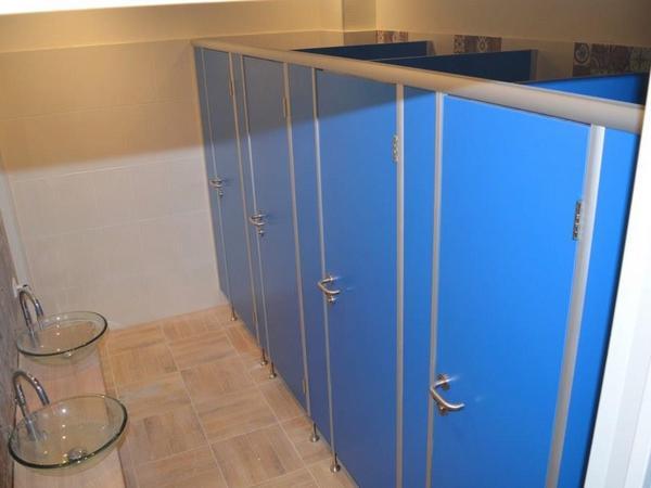 фото №11 - серия БИЗНЕС, кабины для санузлов ТИП 1 (фасад от стены до стены, без углов) ЛДСП 25 мм, цвет синий, профиль анодированный, опоры регулируемые